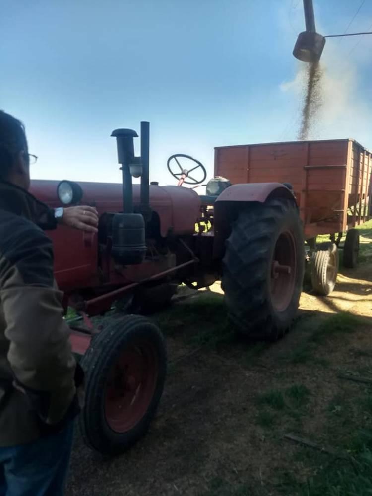 Se recuperan más de 40000 kg de soja sustraída, por casi medio millón de pesos, de una Planta de Silos de la Estación D´Orbigny
