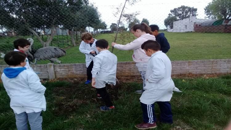 """La agrupación Millacurá realizó una nueva etapa del proyecto """"Caravana Verde"""""""