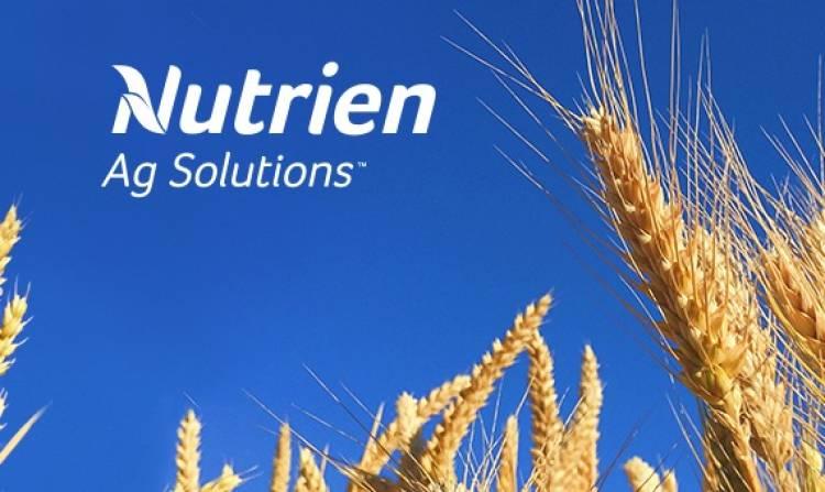 Enfermedades en trigo y cebada y control de malezas para girasol, maíz y soja