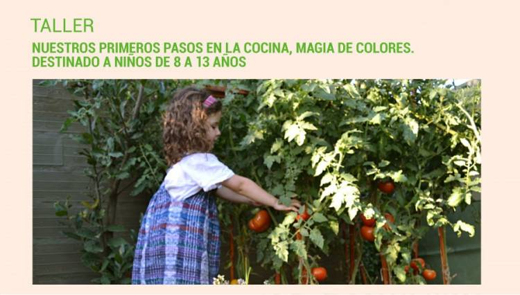 """Taller alimentación saludable """"Nuestros primeros pasos en la cocina, magia de colores"""" destinado a niños de 8 a 13 años"""