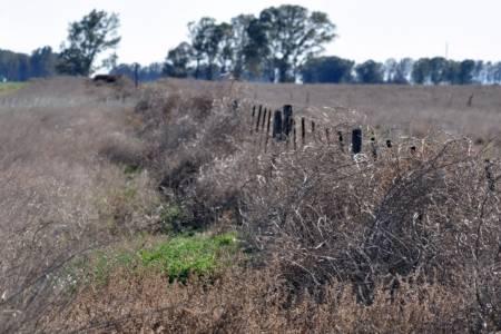 El escenario de sequía en la zona es similar al de los años 2008 y 2009