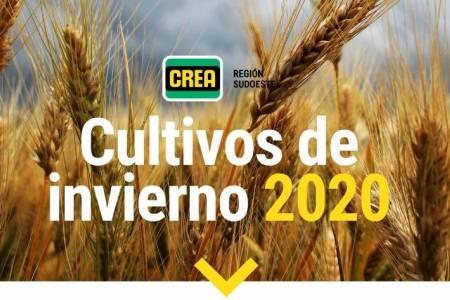 Cultivos de invierno 2020 - CREA