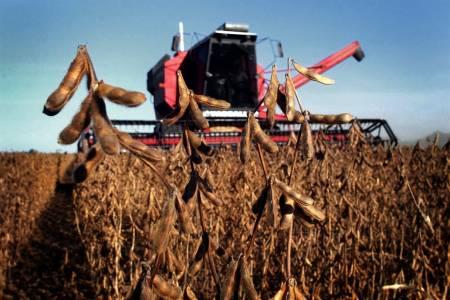 Finalizó la cosecha de soja: por la sequía, fue la más baja en nueve años y se perdieron más de US$4200 millones