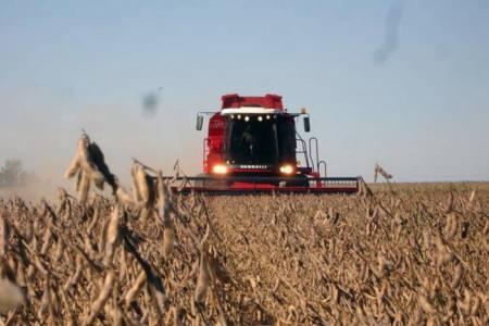 La soja en máximos de cuatro años: ¿cuáles son los factores que impulsan el precio internacional de la oleaginosa?