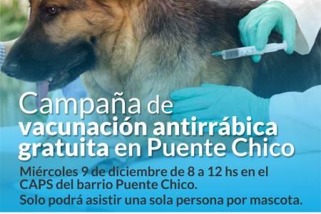 Vacunación antirrábica en barrio Puente Chico