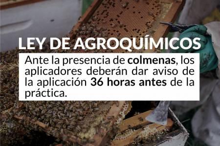 Ley de Agroquímicos: Ante la presencia de colmenas los aplicadores deberán dar aviso de la aplicación 36 horas antes de la práctica