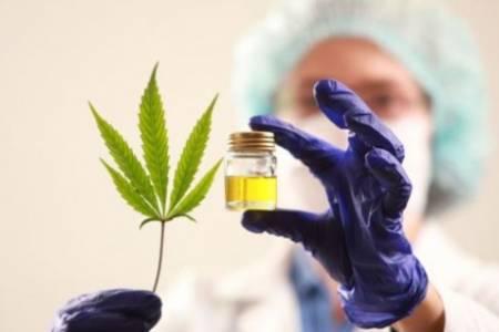 """""""El Cannabis medicinal le transforma la vida a la gente"""""""