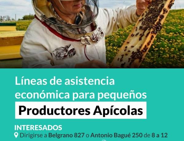 Líneas de asistencia económica para pequeños Productores Apícolas