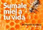 """""""Sumale Miel a tu vida"""" Consumí miel suarense una de la más rica de la provincia"""