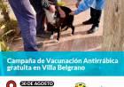 Campaña de Vacunación Antirrábica gratuita en Villa Belgrano
