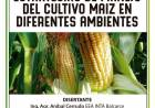 El INTA capacita a los productores en maíz