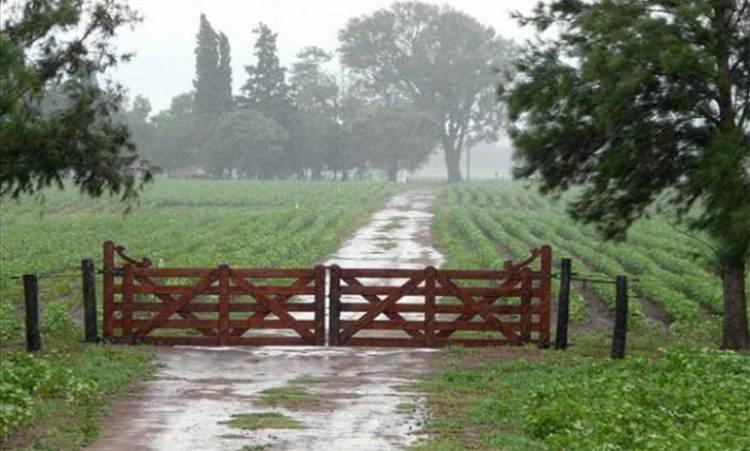 Registro de precipitaciones