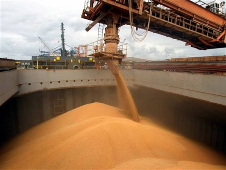 Endurecen controles a exportaciones de carne, granos y lácteos