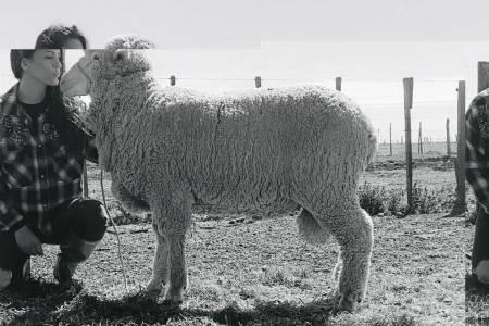 Primer encuentro de productores ovinos